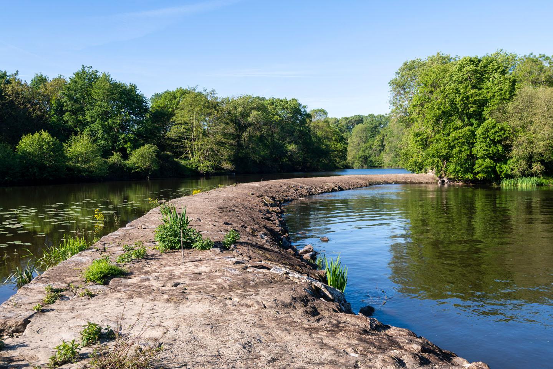 paysage de cours d'eau, moulin des ronces au Pallet, loire-atlantique, bords de sèvre